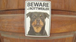 Beware Of The Rottweiler (vlog #39)