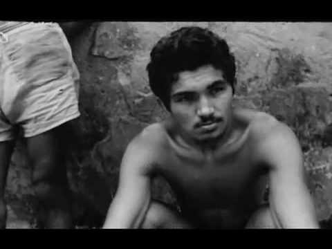 Maranhão de José Sarney, 1966