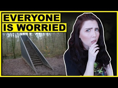 The Stairs In The Woods Phenomenon Everyone Is Worried About