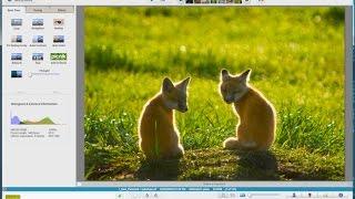 Google Picasa Free Photo Editing Program Tutorial