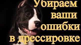 Дрессировка собаки - Ошибки хозяина в дрессировке собаки