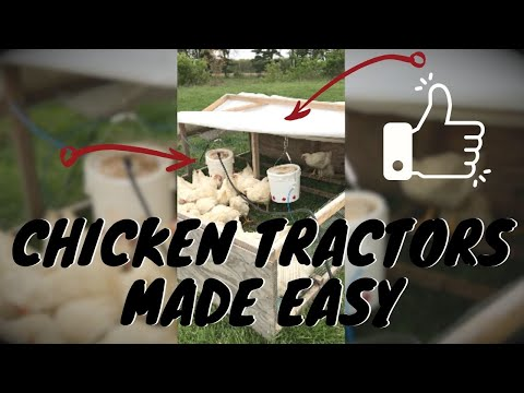 CHICKEN TRACTORS MADE EASY with Farmer Brad