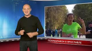 Орловчане выиграли турнир по русскому бою. Новости спорта 23.09.2019