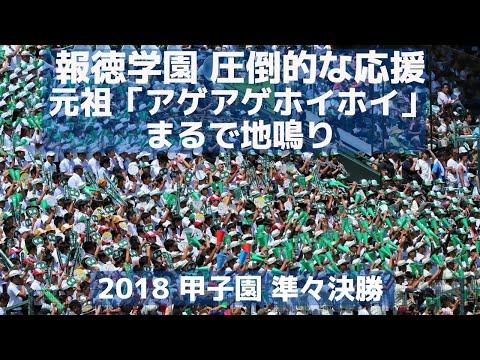 報徳学園 圧倒的な応援「元祖アゲアゲホイホイ」はまるで地鳴り(2018甲子園準々決勝)