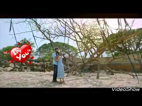 💞💞  Tamil romantic WhatsApp status video💓💓||Ammadi Ammadi song Whatsapp Status