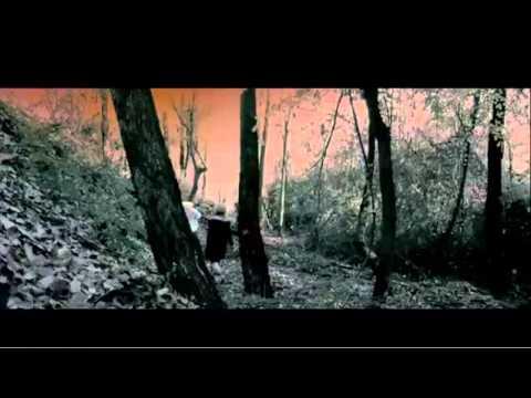 Download The Descendants  Official Trailer!
