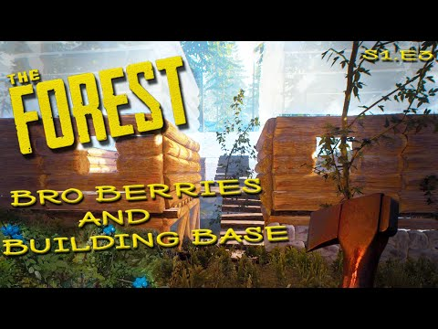 ►The Forest | Bro Berries and Building Base, Season 1 Episode 3 MP LP