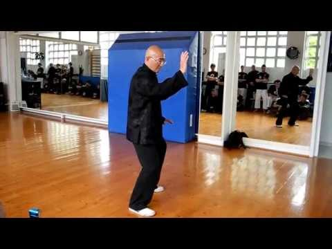 Chen Form (forma Chen) master Guo Ming (George) Xu