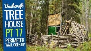 Bushcraft Treehouse 17: Perimeter Wall Around the Bushcraft Camp
