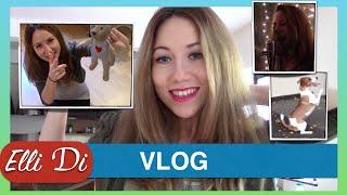 Elli Di VLOG. Блог видеоблогер Элли Ди. Я пою. День с собакой. Джек рассел терьер собака.