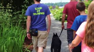 Leash Reactive Dog | Jake Working with his Owners