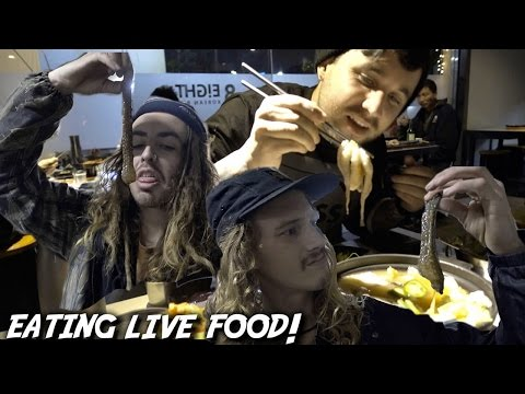 I CAN'T BELIEVE WE ATE LIVE SEAFOOD!!! (GRAPHIC WARNING)