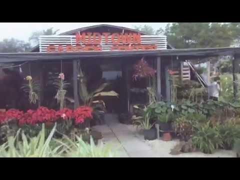 The Mendy House Magic Garden Exhibit Art Basel 2016