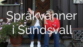 Språkvän i Sundsvall