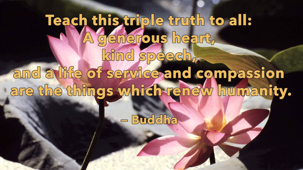 Enlightening Quotes One Minute Inspiration  Enlightening Quotes From Buddha  Youtube