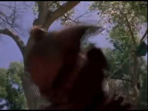 Horror Movie -- Demon Island (2002) Full