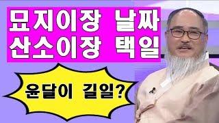 묘지이장 절차/묘지이장 택일/ 묘지터조성