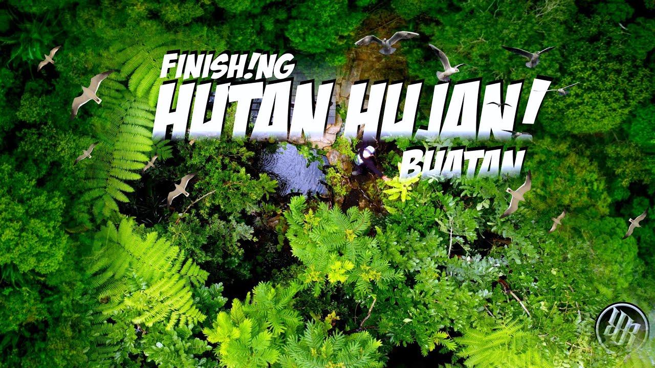 Download Hutan Buatan // untuk Habitat Burung!!!