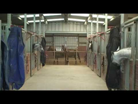North Dallas Horse Training and Boarding farm for sale, DFW Texas