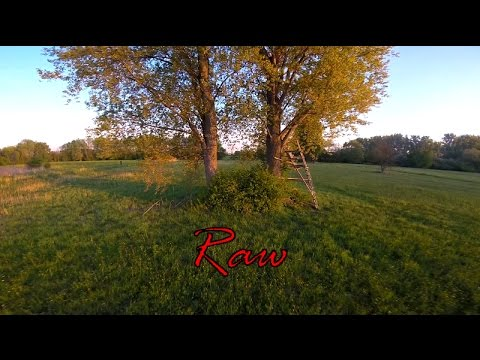 Raw Sunset Session