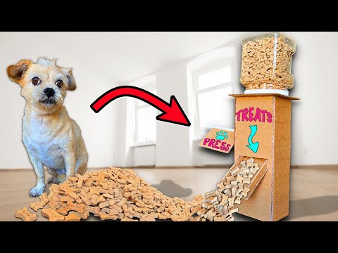 DIY Dog Treat Dispenser to Make at Home