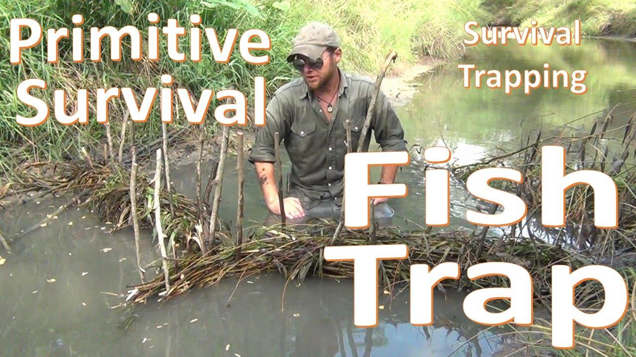Primitive Fish Trap -Survival Basics- Build and Catch - YouTube