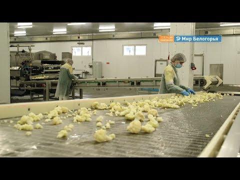 Завод по производству замороженных овощей открылся в Шебекине