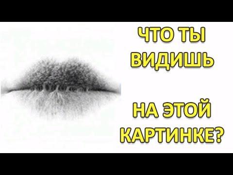 ВИЗУАЛЬНЫЙ ТЕСТ ЛИЧНОСТИ