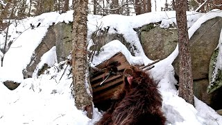 Solo Winter Bushcraft Camping, Natural Primitive Shelter - Fur Blanket Campfire Cooking - Overnight