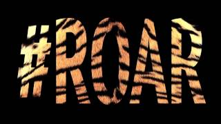 Katy Perry - Roar (official drum song)