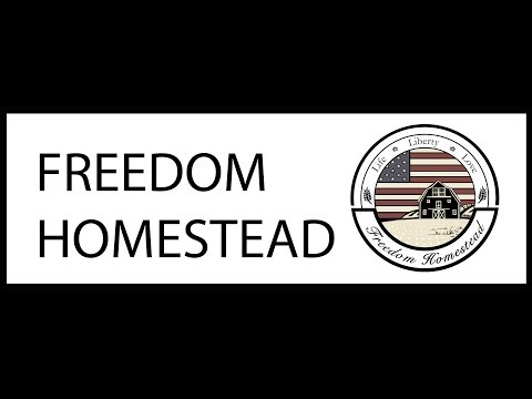 LIVE with Freedom Homestead 1/21/19