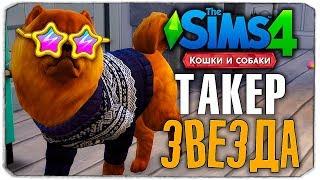 "ТАКЕР - ЗВЕЗДА СИМСТАГРАМА? - The Sims 4 ""Кошки и Собаки"" ▮"