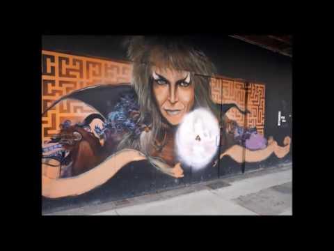 Newcastle Street Art Murals +