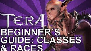 Tera Beginner's Guide: Classes & Races | PVP DOMINUS | 2015
