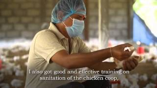Boosting Poultry Productivity & Farmer Incomes in Nepal