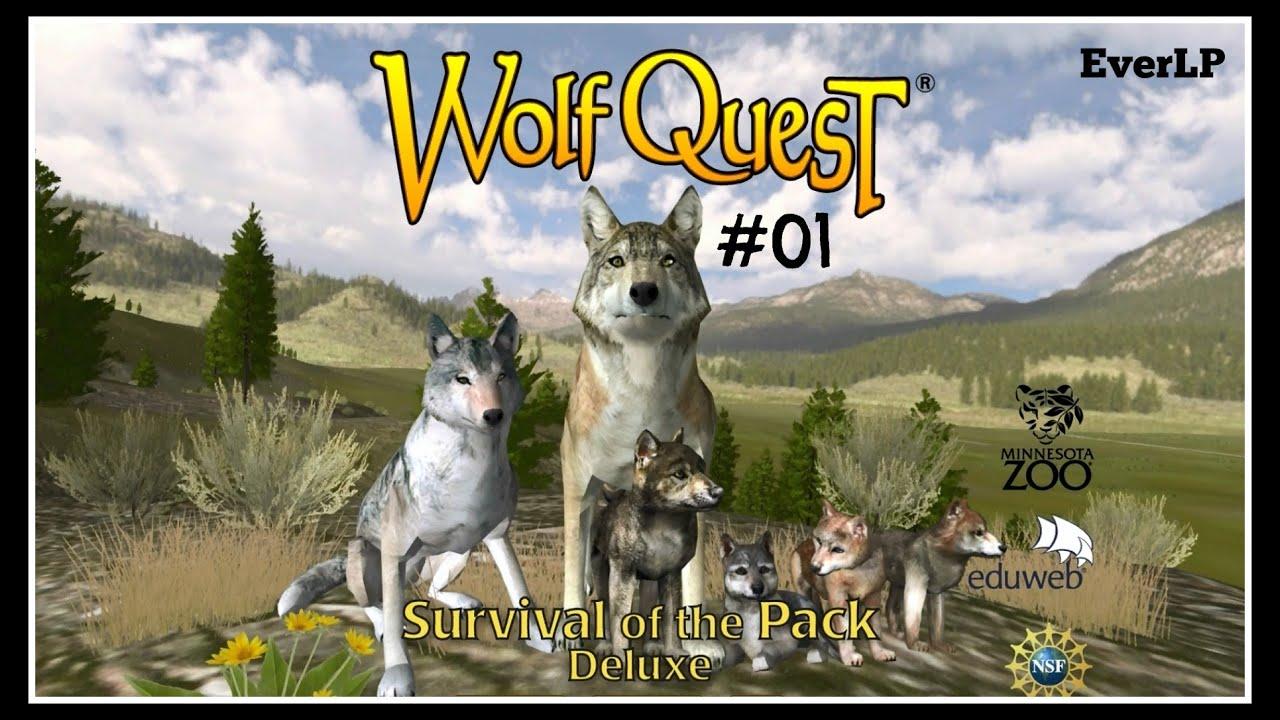 wolf quesr