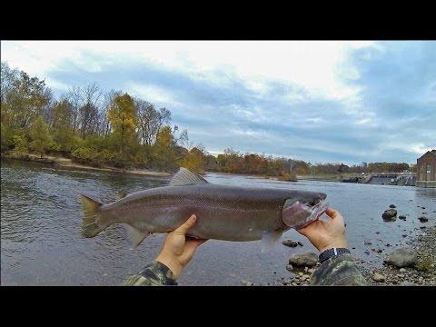 Berrien Springs Fishing 11/4/13