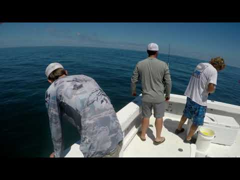 Deep Sea Fishing-Clearwater, FL