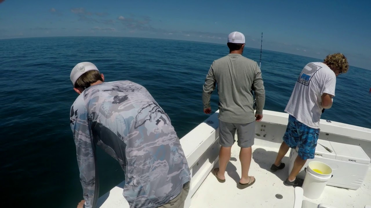Deep sea fishing clearwater fl youtube for Clearwater beach deep sea fishing