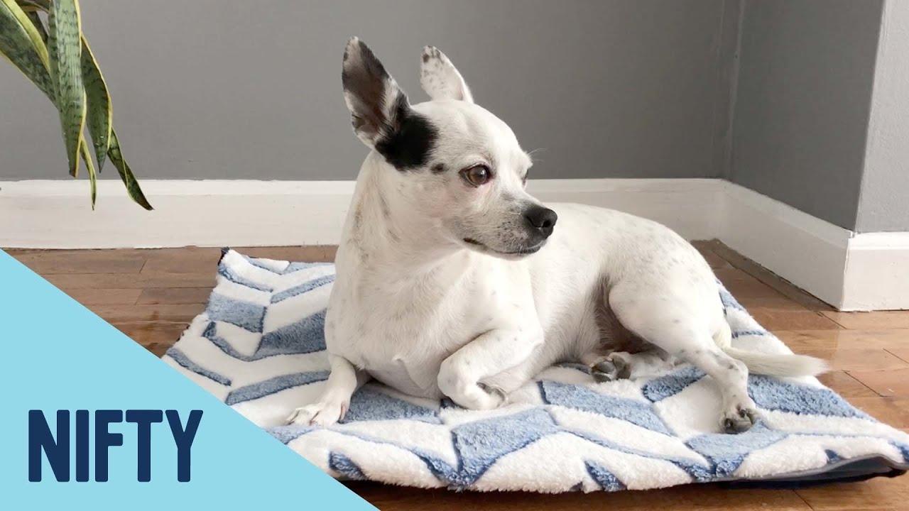 Quick Sew Dog Cooling Mat