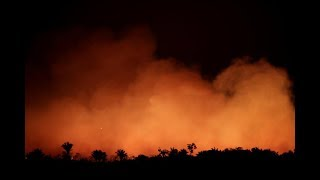 Amazon Forest Fires: How Bad Is It? | Bite-Size News with Sam Jo | The Straits Times