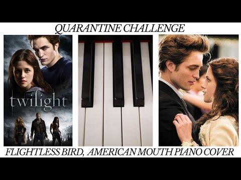Quarantine Challenge//Flightless Bird, American Mouth (piano Cover)    Maria Dorri Violinist