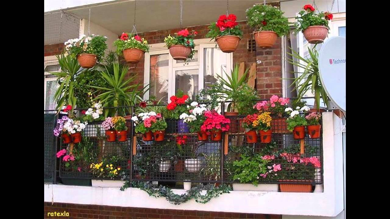 Fascinating balcony garden designs - YouTube