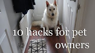 10 CLEANING HACKS FOR PET OWNERS   CLEAN WITH ME   ALINA GHOST