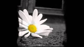 Kamel Messaoudi - Mani Fahem Had Sira (Ana Wenti Yal Messrara)...