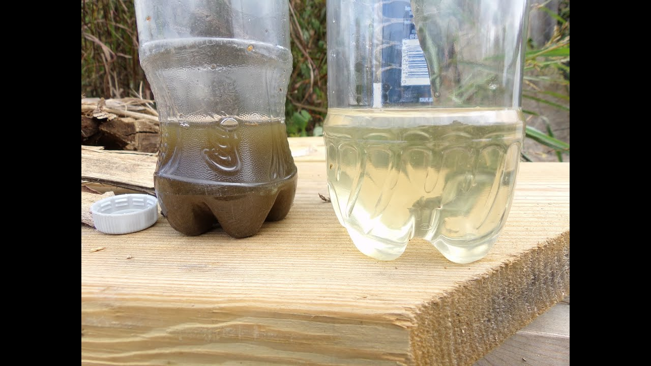 How To Filter Water Without A Filter How To Make A Water Filter In The Wild Youtube