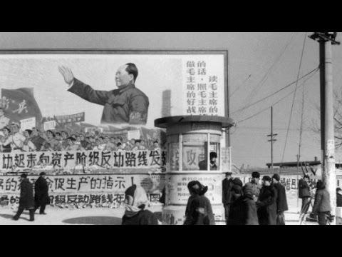 A survivor's account of the Cultural Revolution