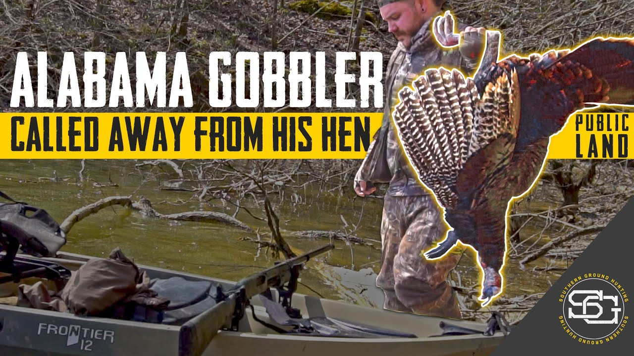 Calling a HUGE GOBBLER Away From His Hen! | Alabama Public Land Turkey Hunting