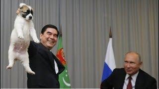 【愛犬家】プーチン大統領がブチ切れ!? トルクメニスタン大統領が子犬の持ち方が許せない!