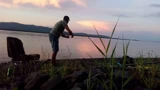 Амур.Рыбалка на резинку август  2017